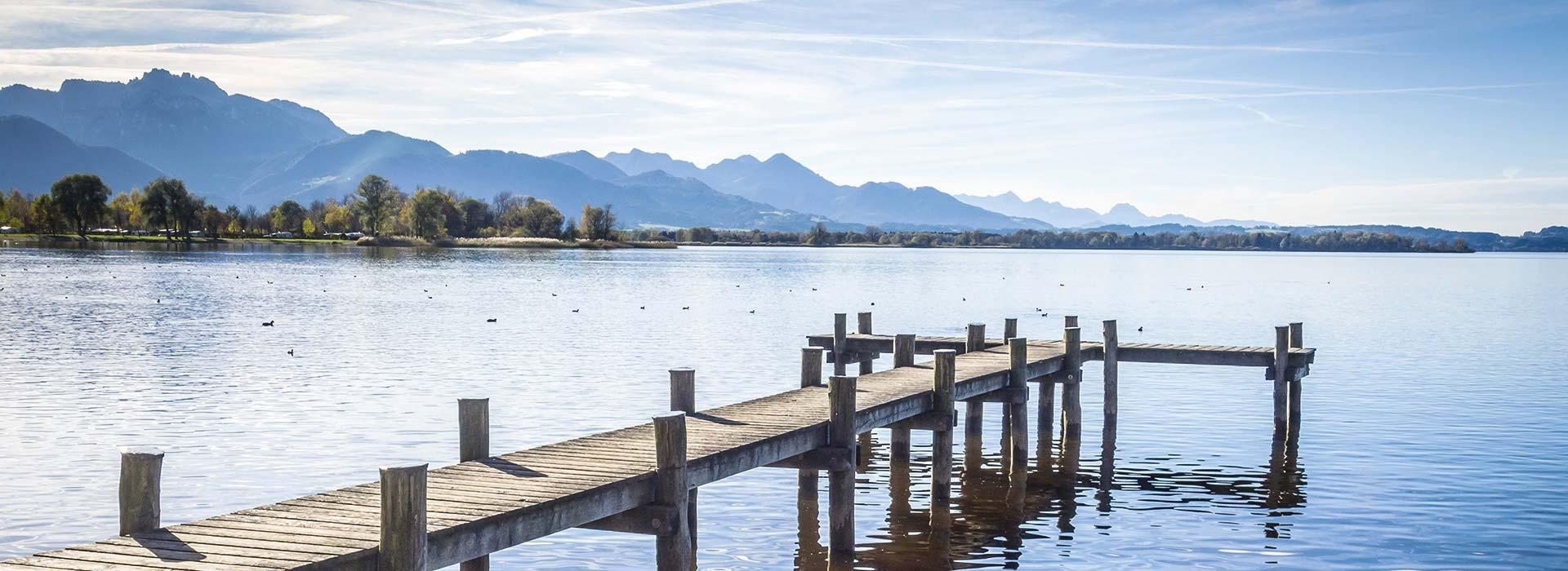 Chiemgau Immobilien Startseite Header